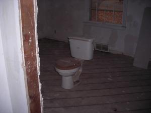 Wayward Toilet